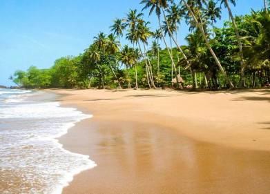 Ankobra Beach Resort Picture