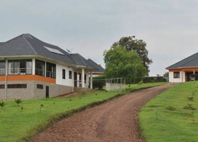 The Crested Crane Bwindi Hotel Picture