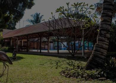 Quinta Oasis Picture