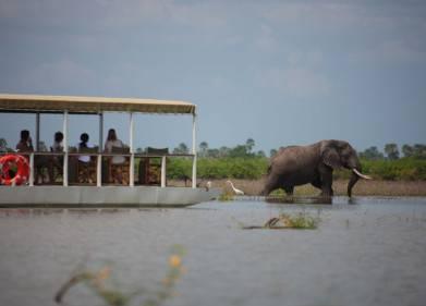 Porini Rhino Camp Picture