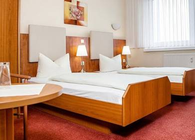 Hotel Erfurt - Wilna Picture