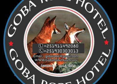 Goba Robe Hotel Picture