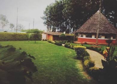 Angari Camp Picture