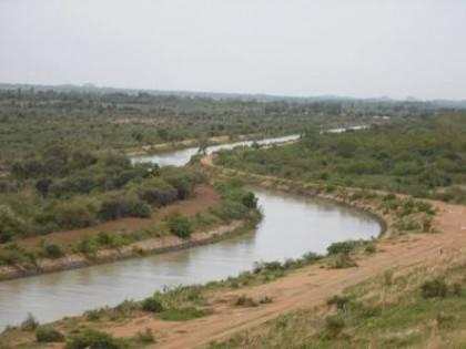 The Chad Basin National Park5