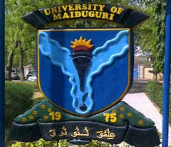 University of Maiduguri1