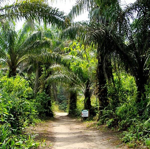 Lufasi Nature Park2