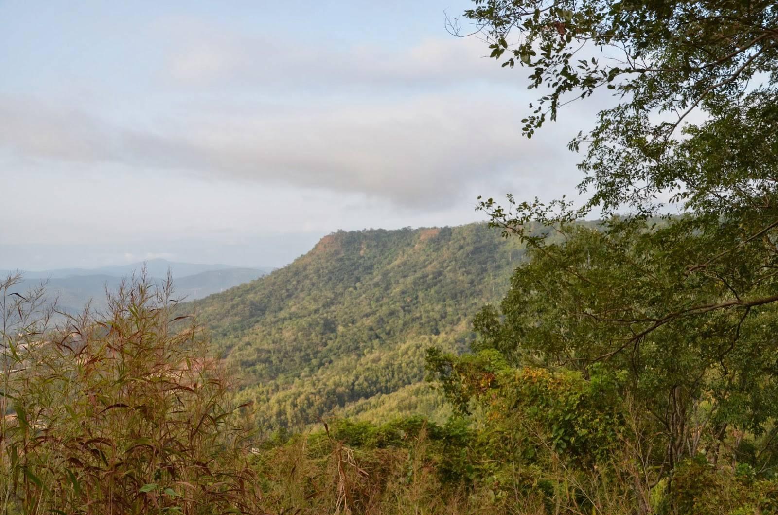 Mount Patti